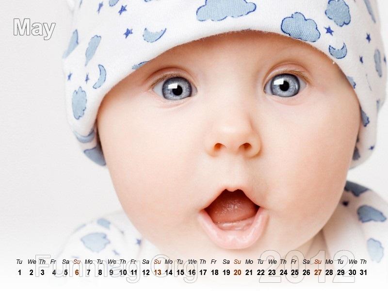 babies-calendar-05