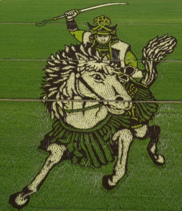 rice paddy art (14)
