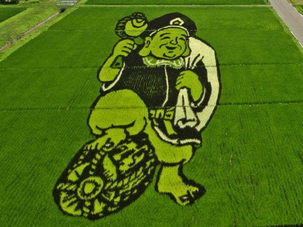 rice paddy art (18)