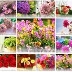 flowers calendar 2012