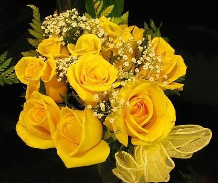 picture-of-yellow-roses- (23)