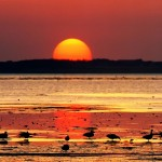 beautiful-sunset-pictures- (5)
