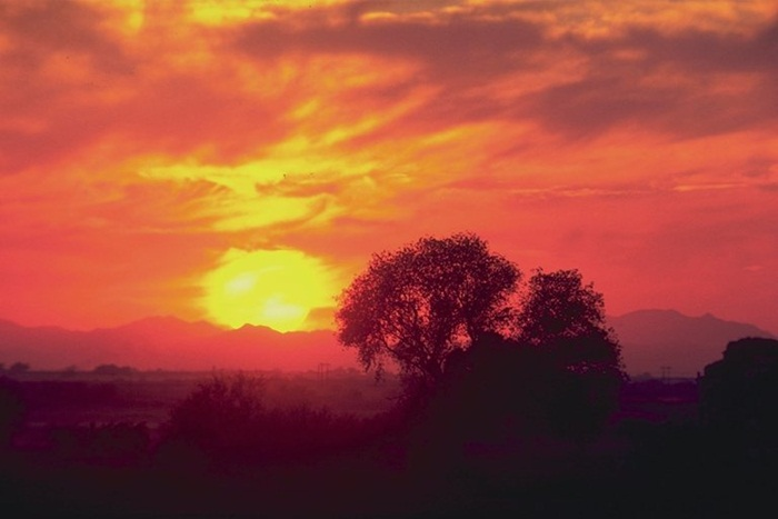 beautiful-sunset-pictures- (12)