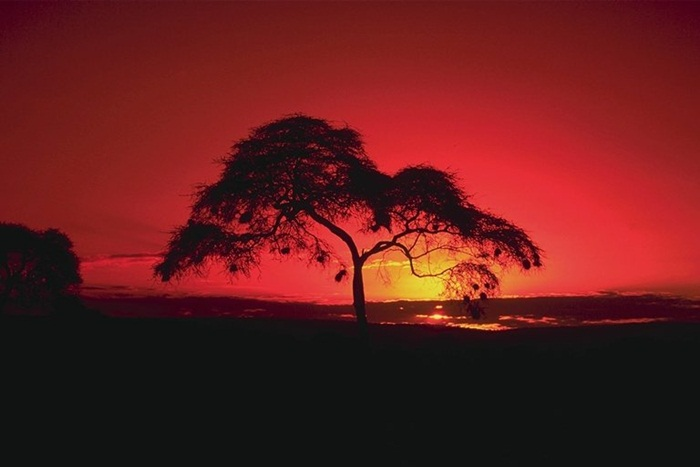 beautiful-sunset-pictures- (30)