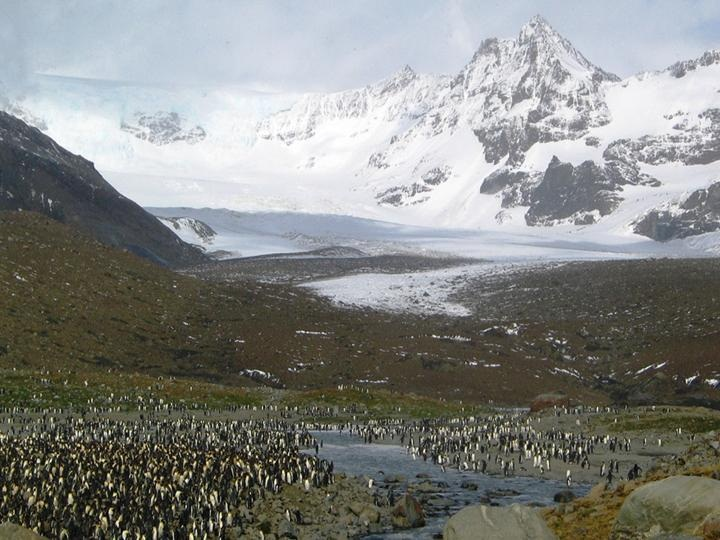 breathtaking-photos-of-antarctica- (20)