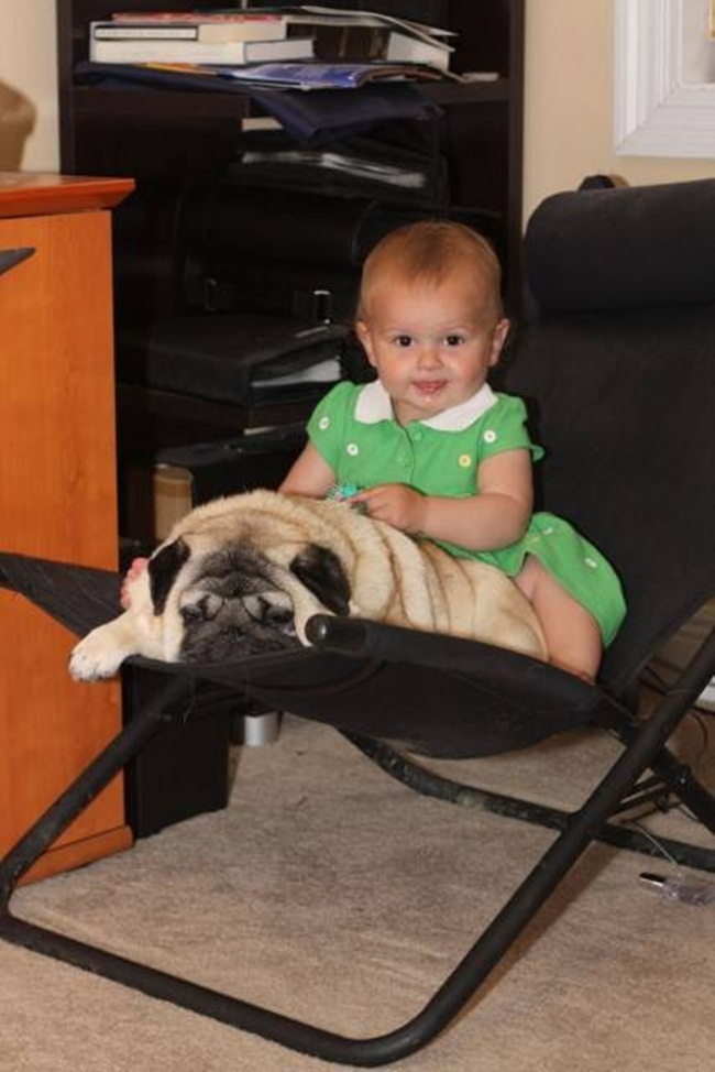 cute-babies-with-dogs- (2)