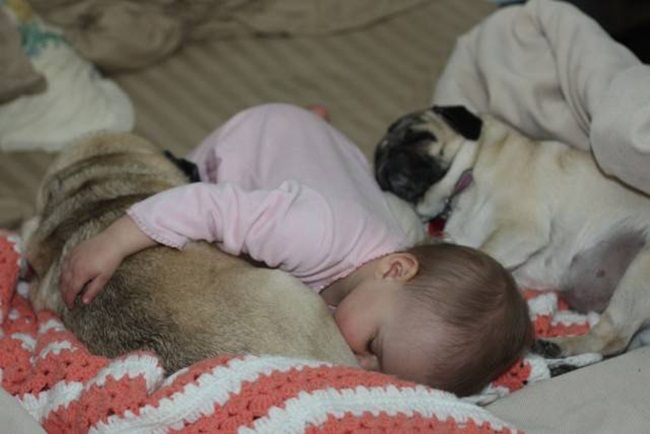 cute-babies-with-dogs- (5)