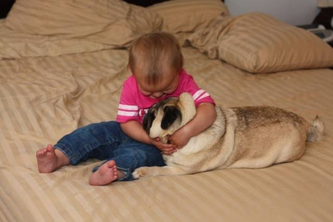 cute-babies-with-dogs- (7)