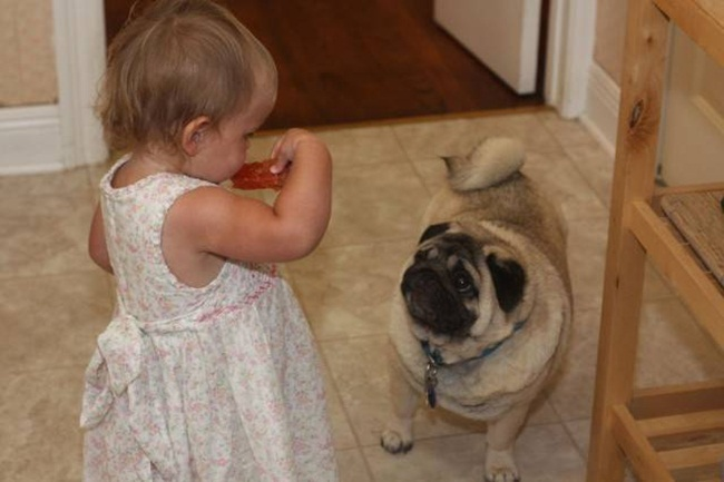 cute-babies-with-dogs- (8)