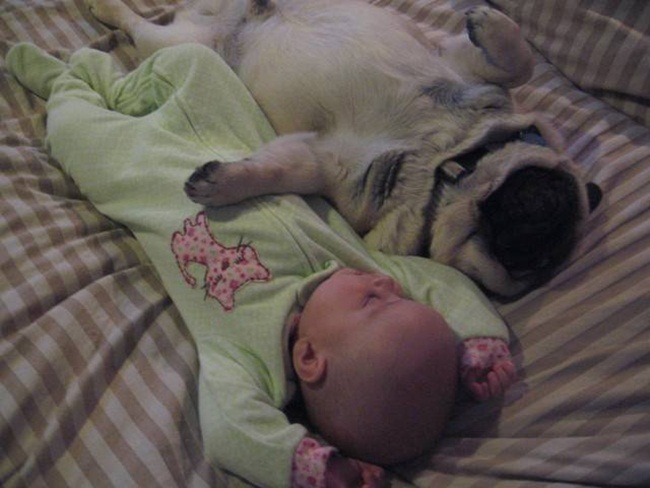 cute-babies-with-dogs- (9)