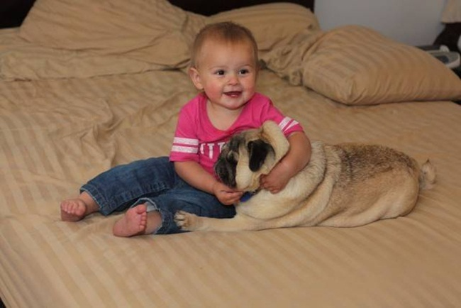cute-babies-with-dogs- (10)