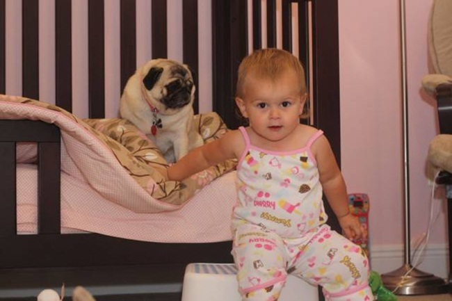 cute-babies-with-dogs- (12)