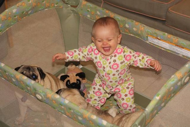 cute-babies-with-dogs- (18)