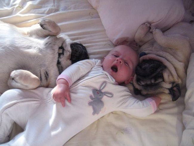 cute-babies-with-dogs- (19)