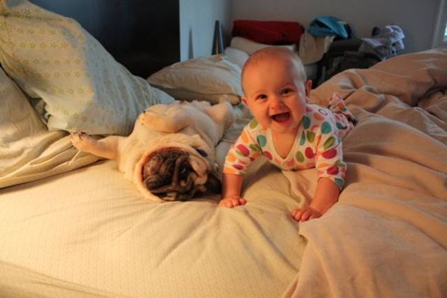 cute-babies-with-dogs- (20)