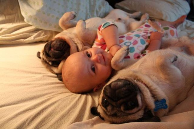 cute-babies-with-dogs- (21)
