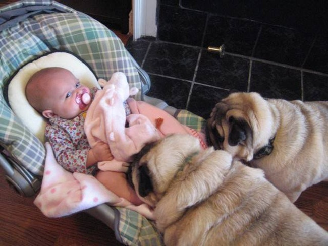 cute-babies-with-dogs- (24)