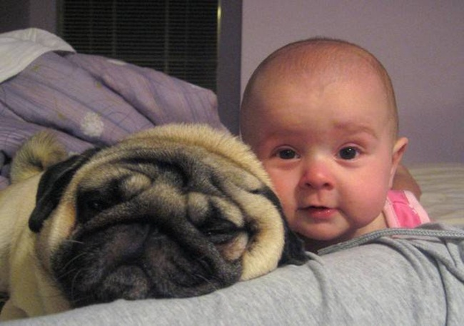 cute-babies-with-dogs- (25)