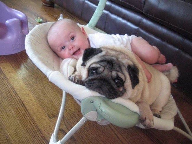 cute-babies-with-dogs- (27)