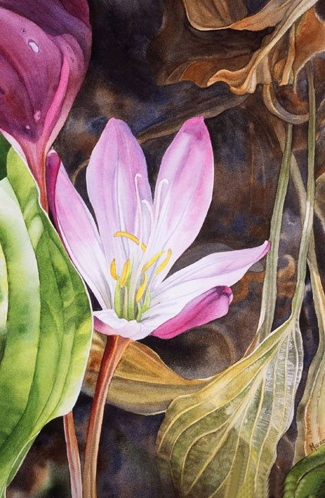 watercolor-flower-paintings-by-marney-ward- (1)