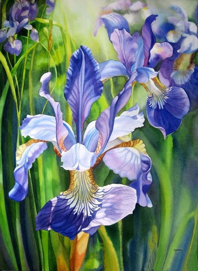 watercolor-flower-paintings-by-marney-ward- (2)