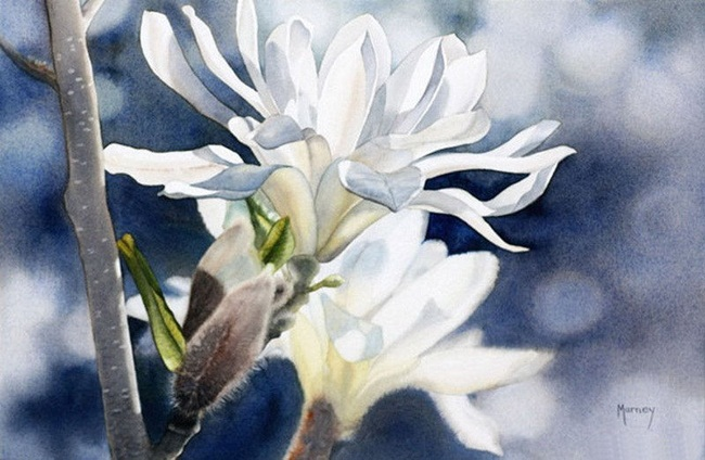 watercolor-flower-paintings-by-marney-ward- (9)