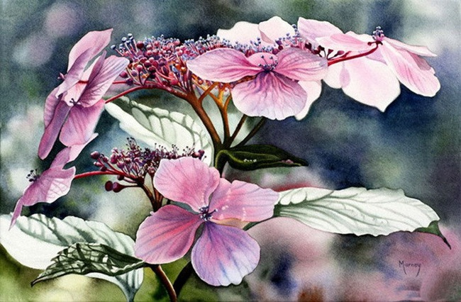 watercolor-flower-paintings-by-marney-ward- (22)