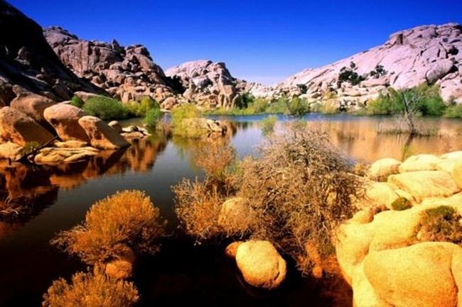 beautiful-nature-views-of-california- (4)