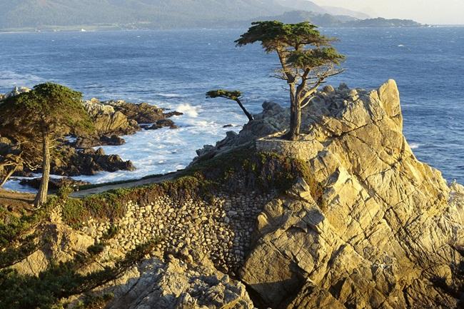 beautiful-nature-views-of-california- (8)