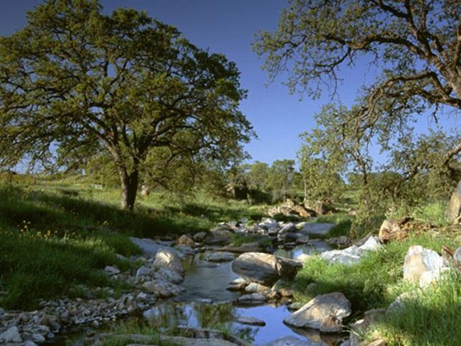 beautiful-nature-views-of-california- (18)