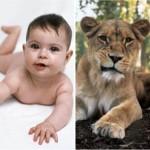Cute Babies Poses Alike Animal Babies