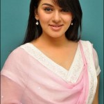 Hansika Motwani In Churidar Dress (18 Photos)
