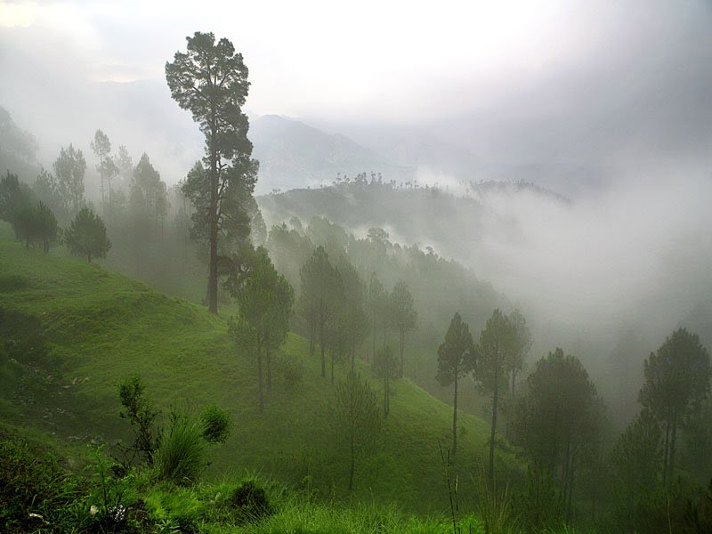 landscape-of-pakistan- (3)