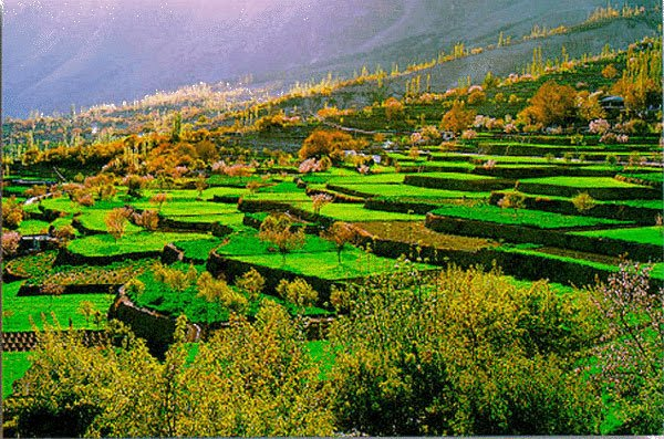 landscape-of-pakistan-hunza-valley- (3)