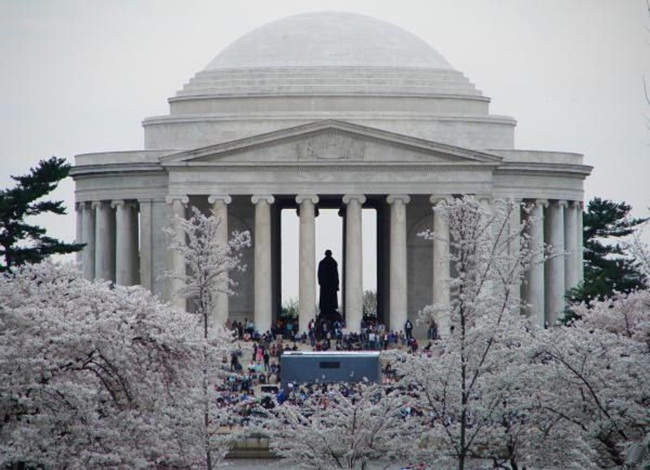 photos-of-cherry-blossom-festival-in-washington- (3)