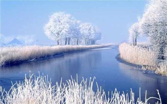 beautiful-winter-scenery- (22)