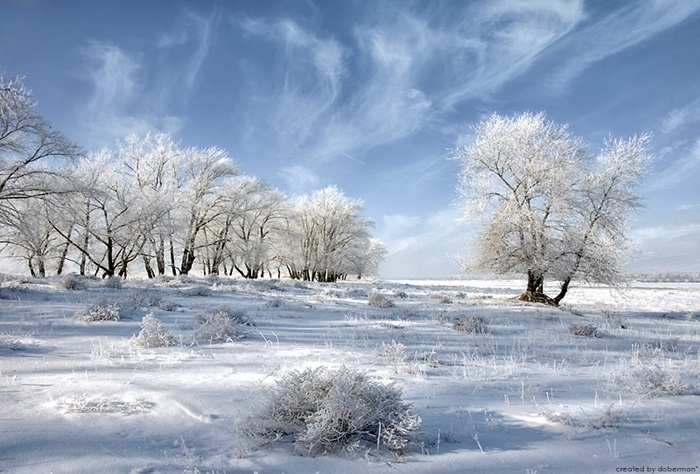 beautiful-winter-scenery- (27)