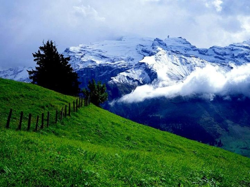 beauty-of-switzerland-33-photos- (22)