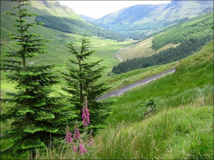 scotland-a-beautiful-place-for-trip-23-photos- (14)