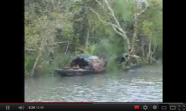 """sundarban the beautiful forest of bangladesh-video"""
