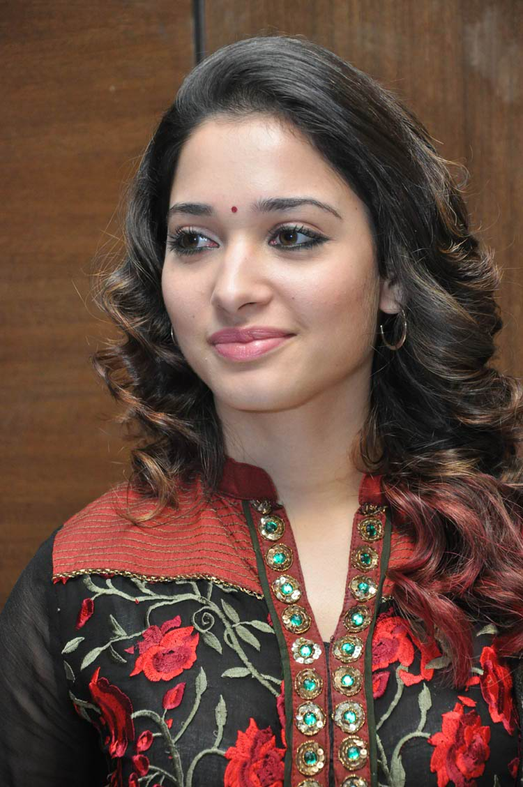 tamanna-in-black-embroidered-dress-20-photos- (12)