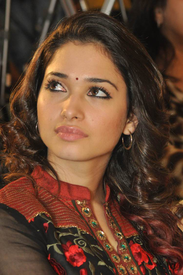 tamanna-in-black-embroidered-dress-20-photos- (13)