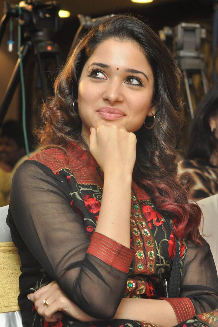 tamanna-in-black-embroidered-dress-20-photos- (14)