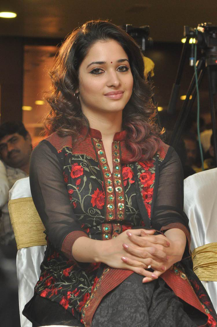 tamanna-in-black-embroidered-dress-20-photos- (15)