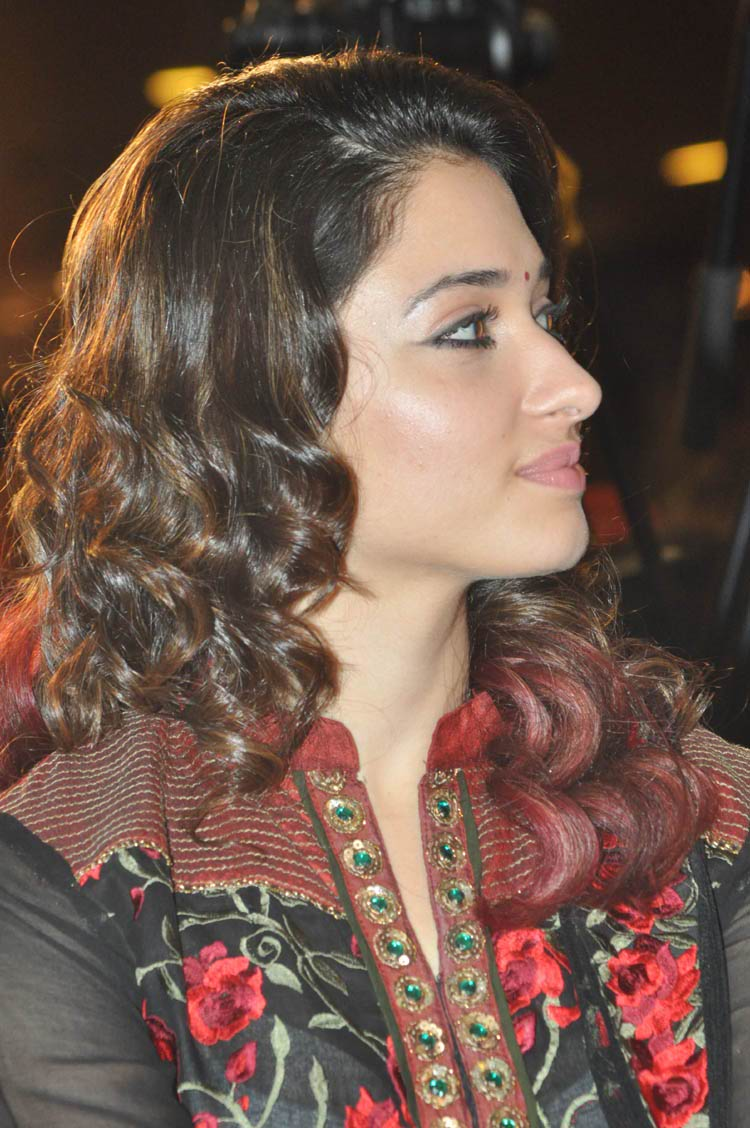 tamanna-in-black-embroidered-dress-20-photos- (16)