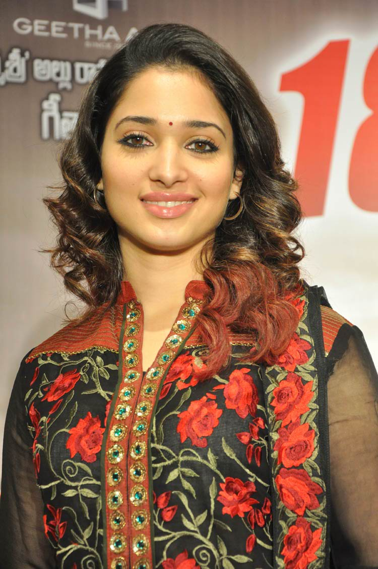 tamanna-in-black-embroidered-dress-20-photos- (17)