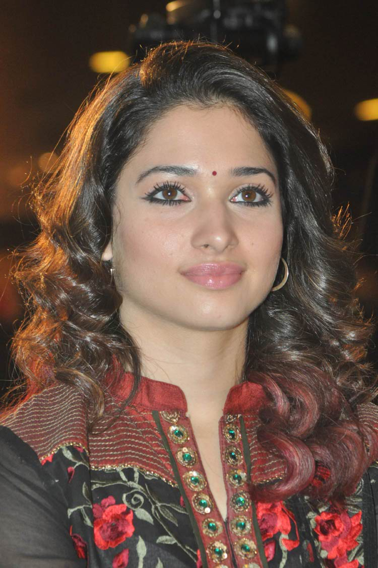 tamanna-in-black-embroidered-dress-20-photos- (18)