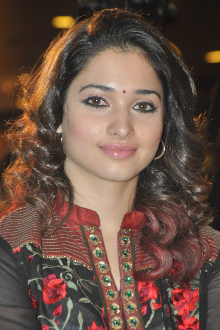 tamanna-in-black-embroidered-dress-20-photos- (19)