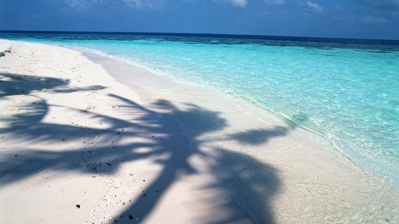 tropical-beach-wallpapers- (6)