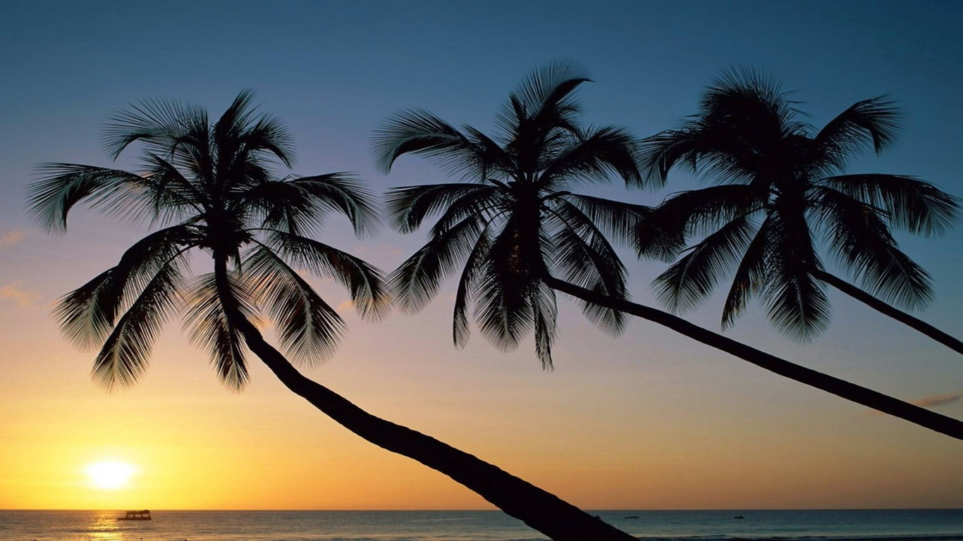 tropical-beach-wallpapers- (18)